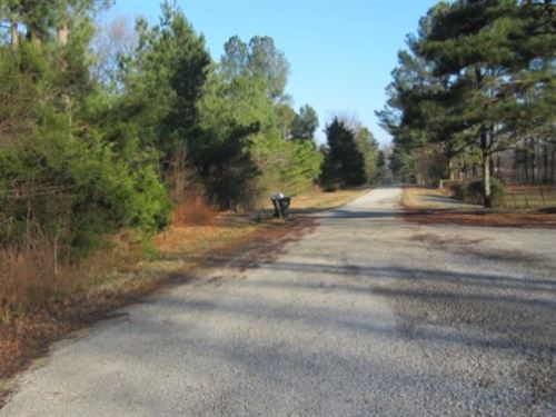 3.1 Acres In Marshall County In Byh : Byhalia : Marshall County : Mississippi