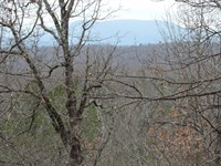 Land Overlooking Buffalo River : Saint Joe : Searcy County : Arkansas