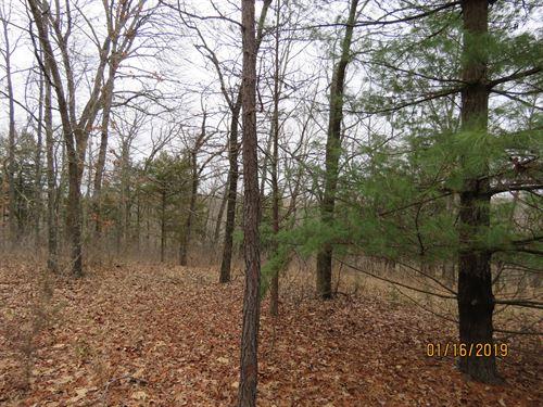 Land For Sale in Ozark County : Gainesville : Douglas County : Missouri