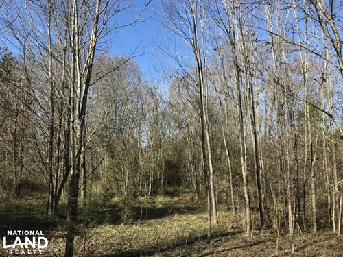 Anderson Land And Homesite : Townville : Anderson County : South Carolina