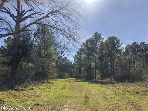 146 Acres Cr 4221 : Jacksonville : Cherokee County : Texas