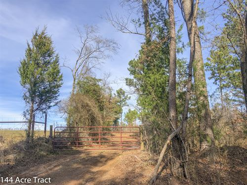 144 Acres Cr 4221 : Jacksonville : Cherokee County : Texas