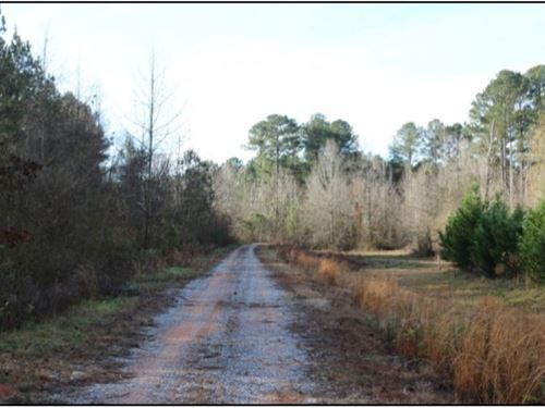 41 Acres In Lauderdale County In Ce : Center Hill : Lauderdale County : Mississippi