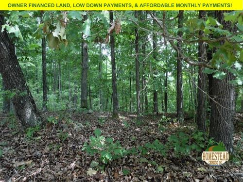Totally Unrestricted Double-Lot : Williford : Sharp County : Arkansas
