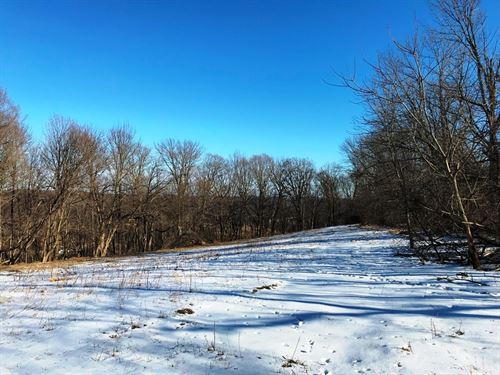 Buildable Hunting Parcel : Readstown : Vernon County : Wisconsin