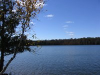 Private Lot On 3 Lake Chain : Winchester : Vilas County : Wisconsin