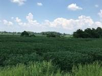 Magnolia Grove : Hernando : Desoto County : Mississippi