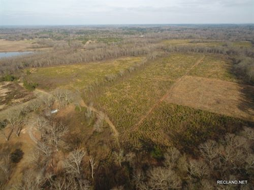 186 Ac, Timberland & Hunting : Bastrop : Morehouse Parish : Louisiana