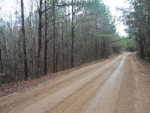 Land 10 Acres Lincoln County : Brookhaven : Lincoln County : Mississippi