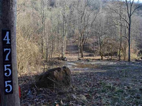 23 Acres Mountain Property : Sneedville : Hancock County : Tennessee