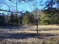 20 Acres Gorgeous Mountain Property : Sneedville : Hawkins County : Tennessee