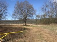 259+/- Acres In Jackson County : Hollywood : Jackson County : Alabama