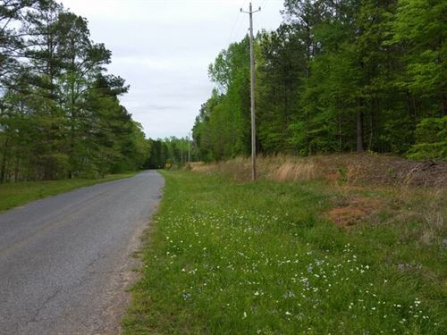 32+/- Acres Of Mature Hardwoods : Goodwater : Coosa County : Alabama