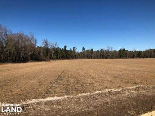 Aynor Mini Farm : Aynor : Horry County : South Carolina
