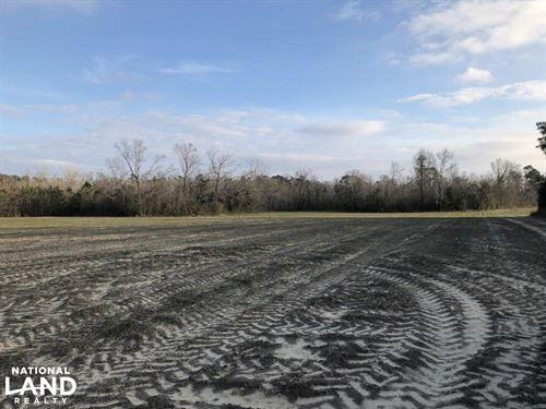 Green Sea Home Site : Green Sea : Horry County : South Carolina