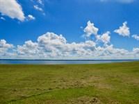 Premier Waterfront Lot Eastern Nc : Colerain : Bertie County : North Carolina
