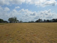Farm For Sale Washington, Nc : Washington : Beaufort County : North Carolina
