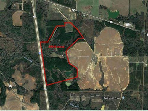 250.8 Acre Recreational Tract : Elko : Houston County : Georgia