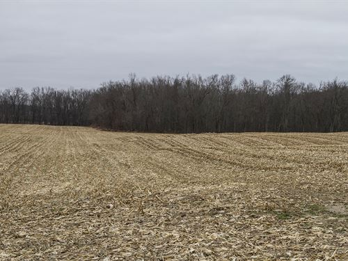 Sr 34, 94 Acres : Edon : Williams County : Ohio