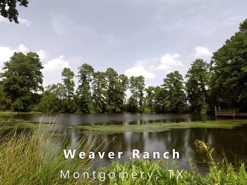 Weaver Ranch, 17 Acres : Montgomery : Texas