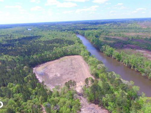 Cape Fear Duck Impoundment : Kelly : Bladen County : North Carolina