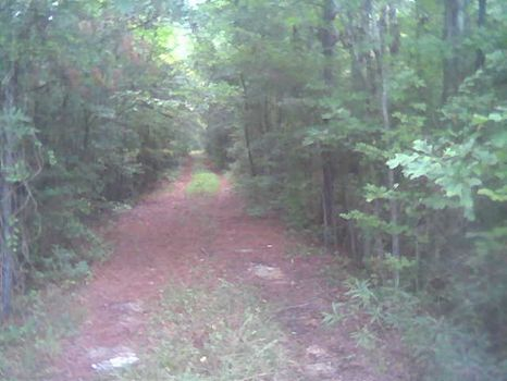 390 Acres S. Montgomery /Commercial : Montgomery : Montgomery County : Alabama