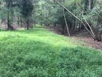59+/- Acres Land In Bloomsburg : Bloomsburg : Columbia County : Pennsylvania