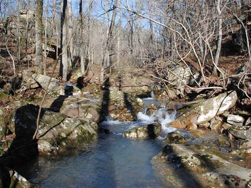 89.5 Acres of Great Hunting/Ti : Drasco : Cleburne County : Arkansas