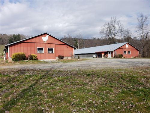 2 House Breeder Poultry Farm : Ellijay : Gilmer County : Georgia