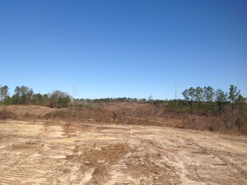 4-010 Rolling Hills Mini Farms Lot : Prattville : Autauga County : Alabama