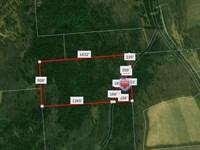 32+ Acres Beautiful Wooded Land : Columbus : Chenango County : New York