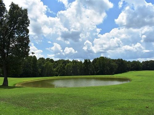 Great Building Lot Ready Your Dream : Bradford : Gibson County : Tennessee
