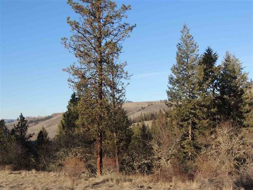 Great Land in The Country : Harpster : Idaho County : Idaho
