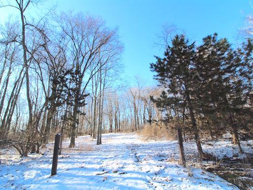 Dent Ridge Rd, 6 Acres : Sardis : Monroe County : Ohio