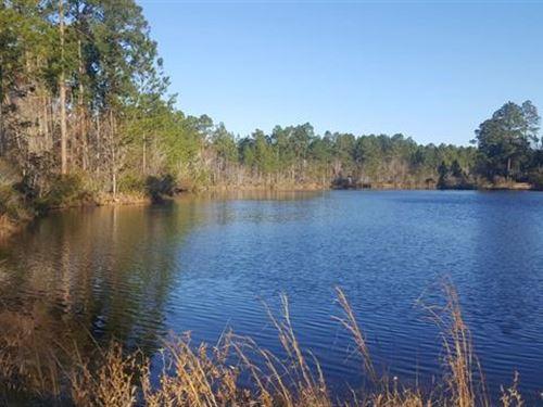 Bragg Hill : Swainsboro : Emanuel County : Georgia
