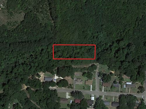 3/4 Acre Lot In Beautiful Ozark : Ozark : Dale County : Alabama