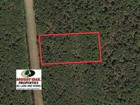 Lot 38 Wysocking Bay For Sale in : Engelhard : Hyde County : North Carolina