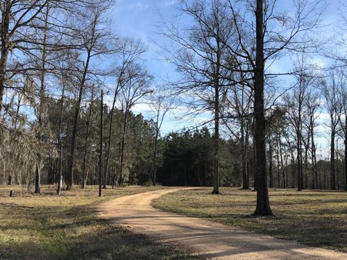 Pearl River Retreat Lot 4 : Wanilla : Lawrence County : Mississippi