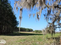 The Pinchony Creek Farm : Letohatchee : Lowndes County : Alabama