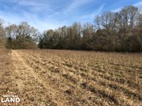 Evergreen Homesite : Evergreen : Conecuh County : Alabama