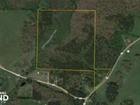 Pineywood Creek Recreation Tract : Newell : Randolph County : Alabama