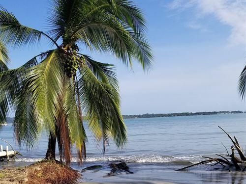 Bocas Del Toro Titled Beach Home : Big Creek : Panama