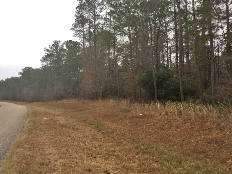 Fruitdale Highway Tract : Chatom : Washington County : Alabama