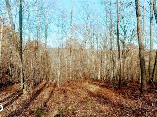 Riverview 15 Acres Durham County : Rougemont : Durham County : North Carolina