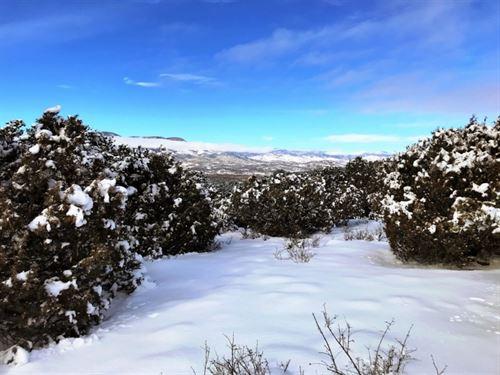 Pinon Hills Ranch 2 : South Fork : Rio Grande County : Colorado