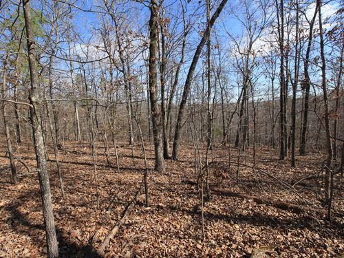 Piedmont Missouri Land 30 Acres : Piedmont : Wayne County : Missouri