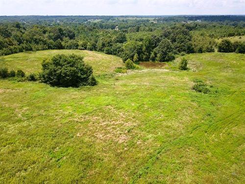 Recreational Farm Ground, Pasture : Bradford : Gibson County : Tennessee