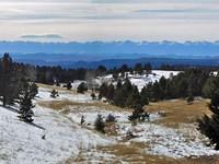 Hidden Canyon With Pond : Cripple Creek : Teller County : Colorado