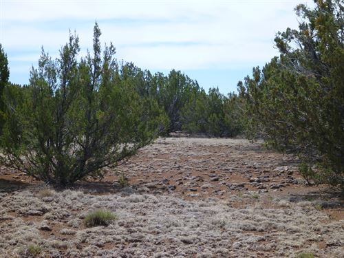 Scenic1 Acre Lot, Camp/Build/Rv : Concho : Apache County : Arizona