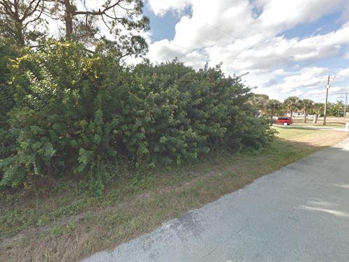 Great Lehigh Acres Building Lot : Lehigh Acres : Lee County : Florida